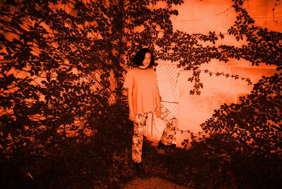 Photo-2-Roza-Terenzi Filter